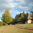Old village in Serbia — Stock Photo #1442970