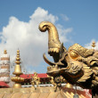 Stock Photo: Golden tibetdragon
