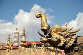 Golden tibetan dragon — Stock Photo