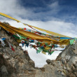 Stock Photo: Tibet's flags