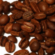 Isolated macro shot of coffee beans — Stock Photo