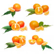 Set of fresh tangerines — Stock Photo