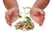 Invest money concept — Stock Photo