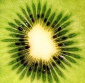 Närbild studio skott av kiwi — Stockfoto