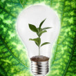 Green energy concept - Stock Photo