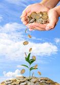 Yatırım para kavramı — Stok fotoğraf