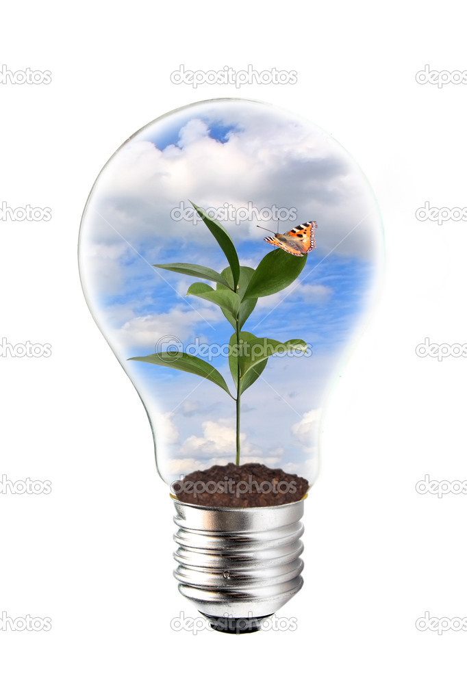 Green energy concept  Stock Photo #1463755