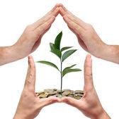 Concepto ahorro de dinero — Foto de Stock