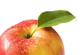 Fresh apple close-up — Stock Photo
