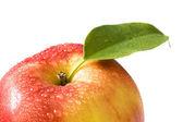 Fresh apple close-up — Stock Photo