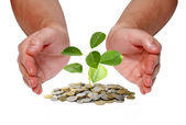 Invest money concept — Foto de Stock