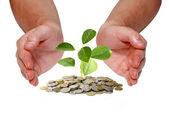Inwestowanie koncepcja pieniądza — Zdjęcie stockowe
