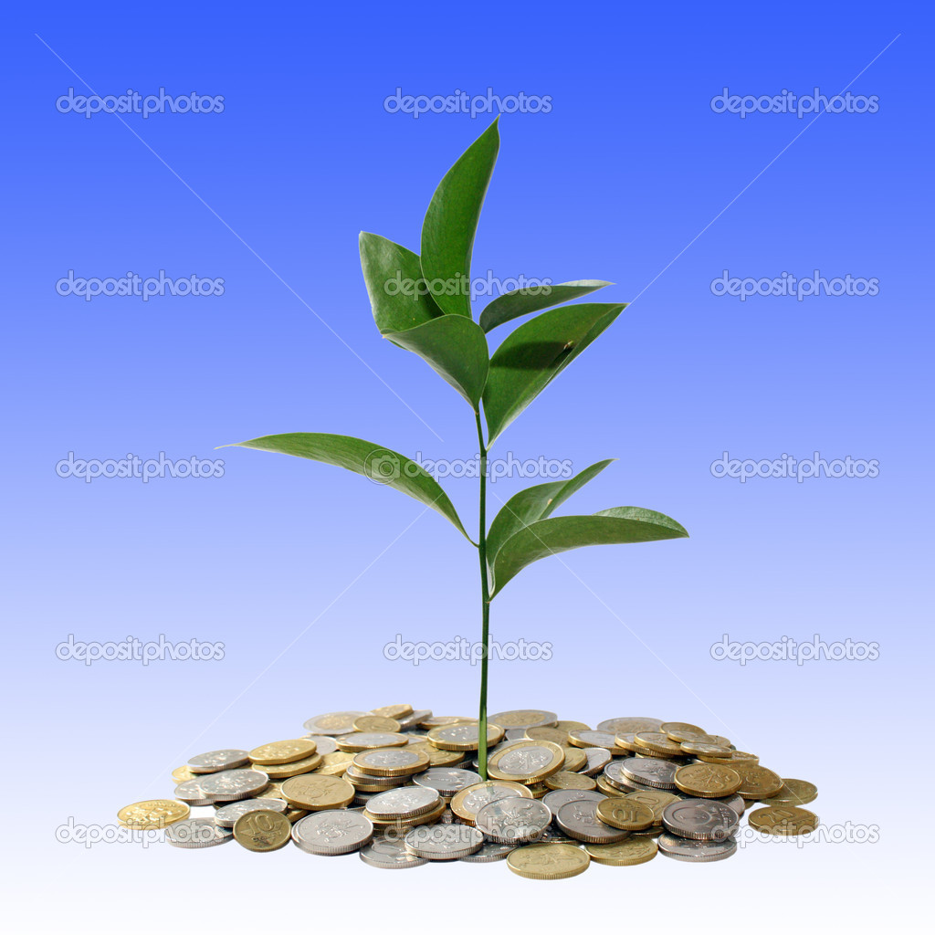 Financial concept — Stock Photo #2392274