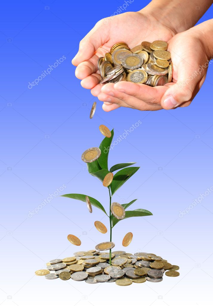 Investment concept — Stock Photo #2405626
