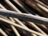 Dry twig — Stock Photo