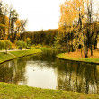 Lake in autumn park — Foto Stock
