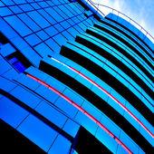 Piękne rośliny niebieski wieżowców — Zdjęcie stockowe