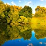 Beautiful reflection of landscape — Stock Photo