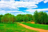 сельский пейзаж — Стоковое фото