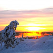 Foto Stock: Winter Sunrise