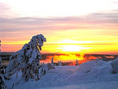 Winter Sunrise — Stock Photo