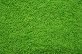 Lo sfondo verde. — Foto Stock