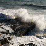 Постер, плакат: Sea wave breaks on a rock