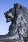 Lion of Trafalgar — Stock Photo