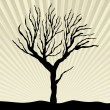 Vector silhouette of a tree — Vettoriali Stock