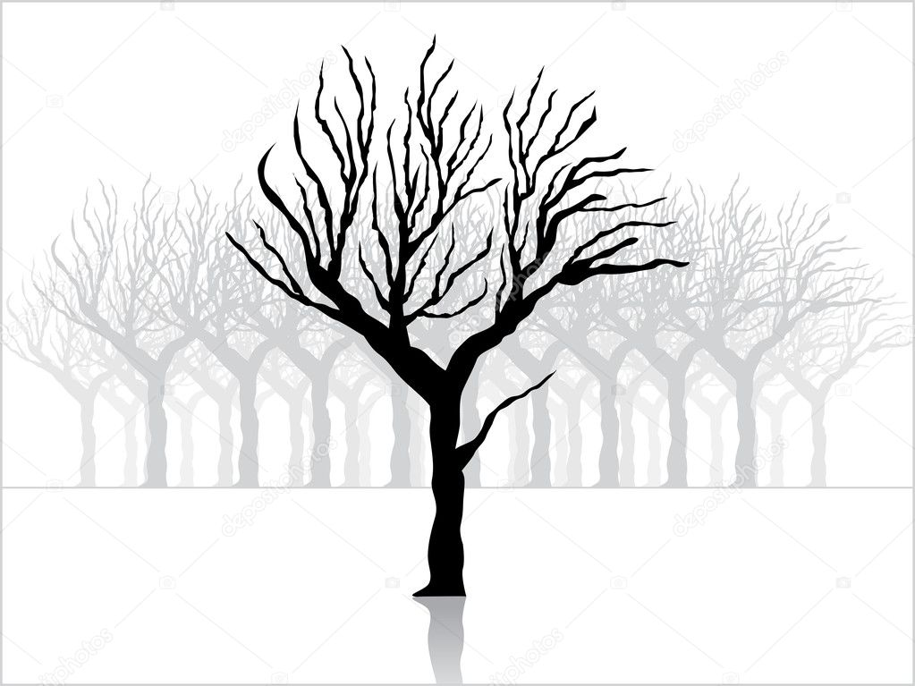Tree Plan Vector Tree Silhouette Vector