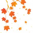 Autumn tree branch, illustration — Imagen vectorial
