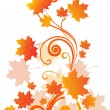 Autumn tree branch, illustration -  