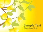 Lemon tree with lemon, vector — Stock Vector