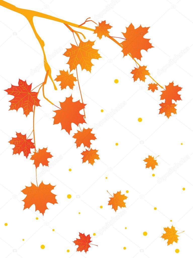 秋天的树分支,矢量图的背景