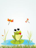 Background with frog — Stock Vector