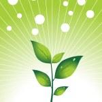 Illustration, green herbal leaf and fog — Stock Vector #2027214