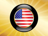 Us button with flag — Stock Vector