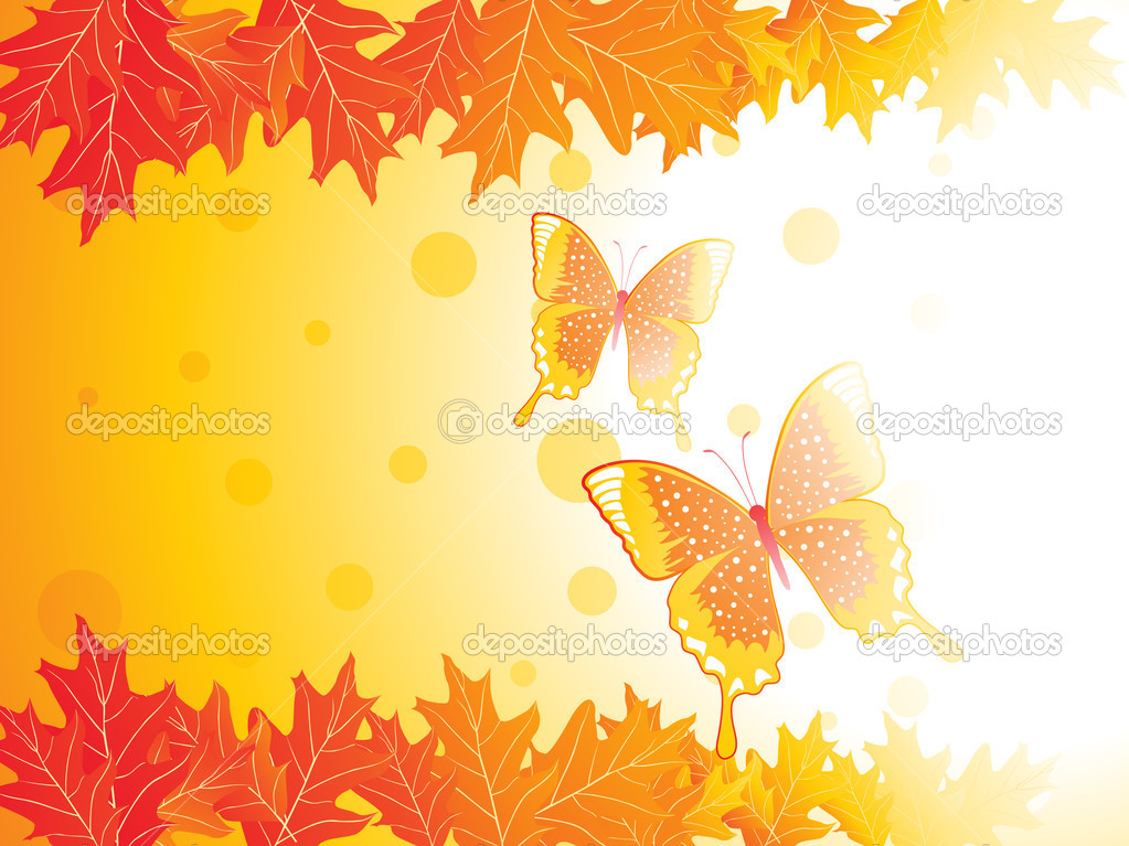 Autumn leaves and butterfly, vector illustration  Stock Vector #2336567