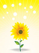 Beautiful sunflower and fog — Stock Vector
