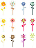 Colorful blossoms on white background — Stock Vector