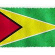 Flag of Guyana on background — Stock Photo