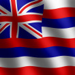 Flag of Hawaii waving in the wind — Stock Photo