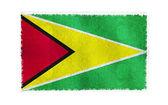 Flag of Guyana on background — Stock Photo