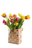 Colorfull tulips — Stock Photo