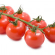 Stock Photo: Tomatoes isolated