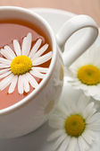 Cup of herbal tea and camomile flowers — Stock Photo