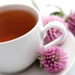 Cup of herbal tea and clover flowers — Stock Photo #1700389