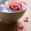 Flower floating in white bowl — Stock Photo #1707482