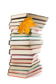 Pile of books and autumn leaf isolated — Stock Photo
