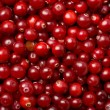 Red cranberries background — Stock Photo #1774289